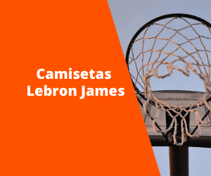 Camisetas Lebron James