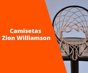 Camisetas Zion Williamson